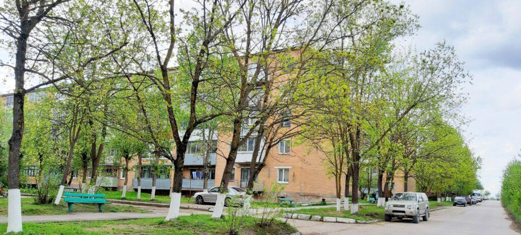 Калужская область Дзержинский район деревня Жилетово дом 13 Продам